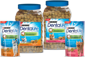 Purina DentaLife Cat Treats Family Group Shot