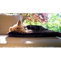 Furhaven NAP Plush Fur Crate Orthopedic Pet Mat Color: Espresso, Size: Medium (29
