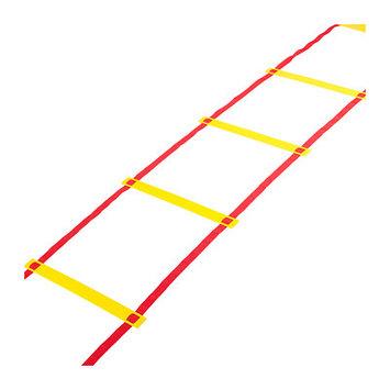 Trademark Innovations Agility Ladder