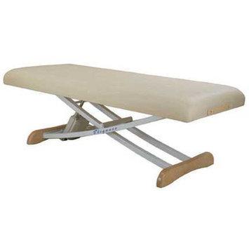 Customcraftworks Elegance Basic Electric Massage Table Color: Teal