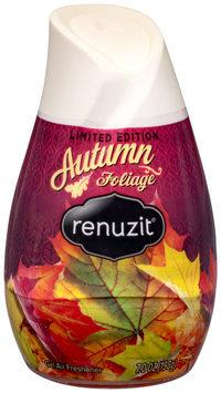 Renuzit® Autumn Foliage Gel Air Freshener