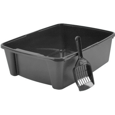 Iris Litter Box with Scoop Color: Gray
