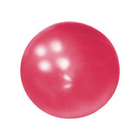 Yoga Direct Weighted Pilates Ball Red