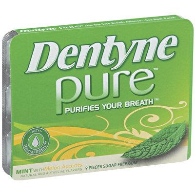 Dentyne Pure Mint W/Melon Accents Sugar Free Gum