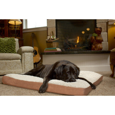 Furhaven Ultra Plush Deluxe Ortho Pet Mat Color: Cream, Size: Small (15