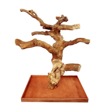 A & E Cage Carved Single Java Wood Tree Size: Large (32