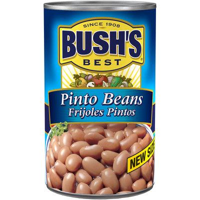 Bush's® Best Pinto Beans 41 oz. Can