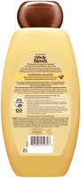 Garnier® Whole Blends™ Avocado Oil & Shea Butter Extracts Nourishing Shampoo 22 fl. oz. Bottle