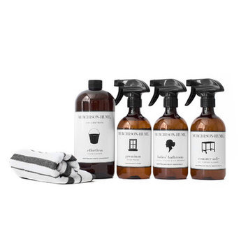 Murchison-hume 5 Piece Spring All-Purpose Cleaner with Ammonia Set