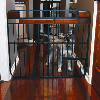 Carlson Pet Design Studio Expandable Dog Gate