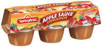 Springfield Cinnamon 4 Oz Apple Sauce 6 Pk Cups