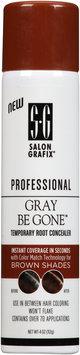 Salon Grafix® Professional Grey Be Gone™ Brown Shades 4 oz. Aerosol Can