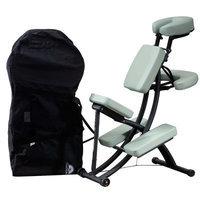 Oakworks Portal Pro Massage Chair Package Color: Earth