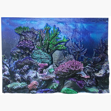 Bergan Pet Products 3D Background Coral Reef Size: 12