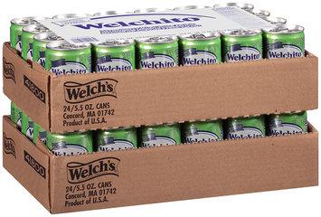 Welchito® Strawberry Kiwi Juic Drink 48-5.5 fl. oz. Can