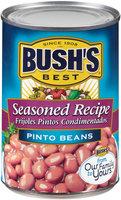 Bush's Best® Seasoned Recipe Pinto Beans 16 oz. Can