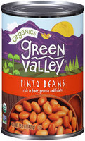 Green Valley® Organics Pinto Beans 15.5 oz. Can