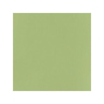 Bazzill T5-5149 12 x 12 Smoothies Cardstock - Everglade