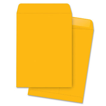 Business Source Catalog Envelopes - Kraft