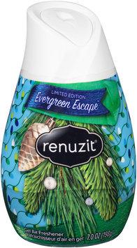 Renuzit® Evergreen Escape Gel Air Freshener