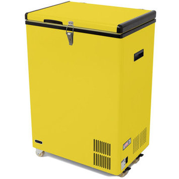 Whynter 3.17 Cu. Ft. Portable Refrigerator with Freezer Color: Yellow