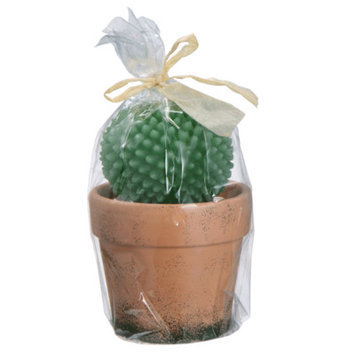 Bidkhome Potted Cactus Candle (Set of 6)
