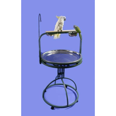 A & E Cage Deluxe Bird Play Stand with Wood Perch Color: Pure White