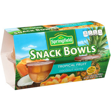 Springfield® Tropical Fruit Snack Bowls 4-4 oz. Bowls