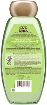 Garnier® Whole Blends™ Green Apple & Green Tea Extracts Refreshing Shampoo 12.5 fl. oz. Bottle