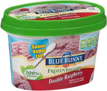 Blue Bunny® Double Raspberry Frozen Yogurt 5.5 fl. oz. Cup
