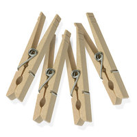 Flashpoint Clothes Pins Wood, With Spring, Pack of 50