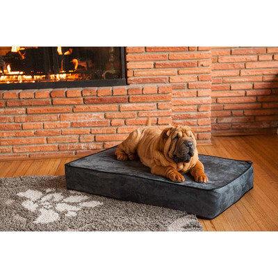 O'donnell Industries Odonnell Industries 95570 Small 5 in. Thick Outlast Dog Bed - Navy-Camel