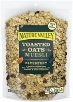 Nature Valley® Blueberry Toasted Oats Muesli 11 oz. Pouch