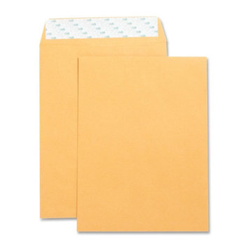 Business Source Catalog Envelopes Self Seal Plain