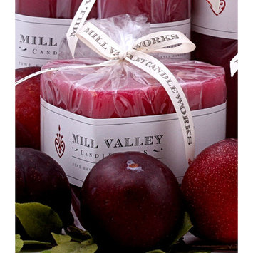 Mill Valley Candleworks Summer Plum Scented Novelty Candle Size: 3.5