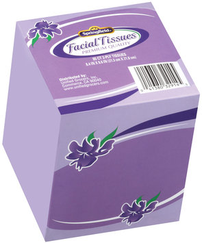 Springfield® Facial Tissues 85 Ct Box