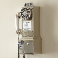 Birch Lane Vintage Pay Phone Finish: Brushed Chrome