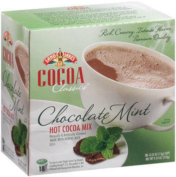 Land O'Lakes® Cocoa Classics® Chocolate Mint Hot Cocoa Mix 9.54 oz. Box