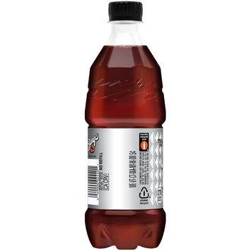 Barq's® Root Beer 20 fl. oz. Plastic Bottle