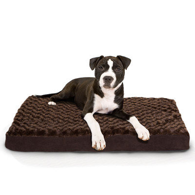 Furhaven Ultra Plush Deluxe Ortho Pet Mat Color: Chocolate, Size: Small (15