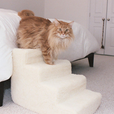 Pet Stairz Foam Pet Stairs - Size: 4 Step