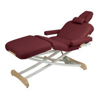 Customcraftworks Elegance Deluxe Electric Massage Table Color: Purple