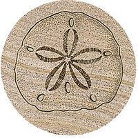 Thirstystone TS50 Natural Sandstone Coaster Set Sand Dollar