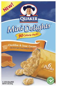 Mini Delights Cheddar & Sour Cream .70 Oz Packs Multigrain Cakes 6 Ct Package