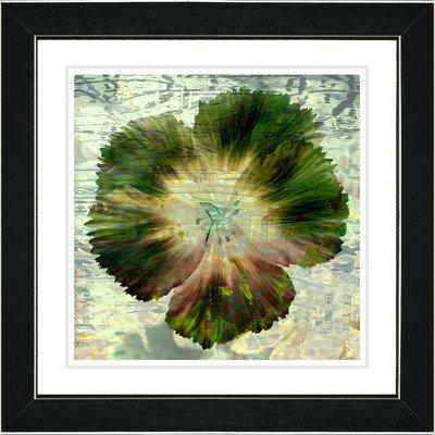 Studio Works Modern 'Flowers of Okavango - Red' Framed Print