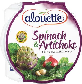 Alouette® Spinach & Artichoke Soft Spreadable Cheese 6.5 oz. Tub
