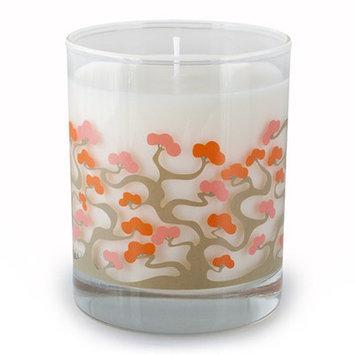 Crash Zuz Design Bonsai Soy Candle