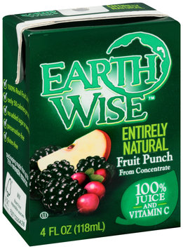 Earth Wise Aseptic Fruit Punch 100% Juice 16 fl. oz. Pack