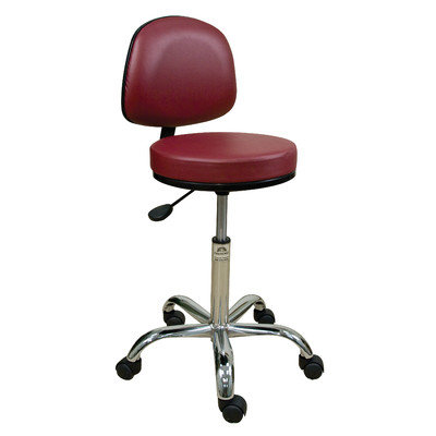 Oakworks Professional Stool with Adjustable Backrest Color: Orchid