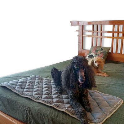 Duobed Quilted Pillowtop Dog Mat Size: Small (42